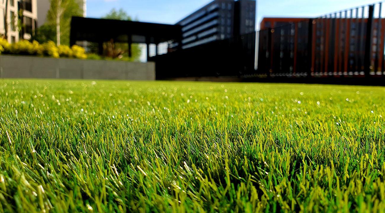 Comment planter de l'herbe ?