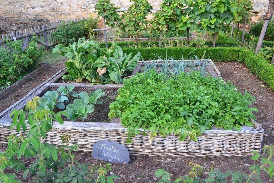 Les outils pour le jardinage